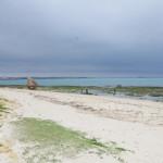 那覇空港からすぐ近くにある瀬長島をお散歩♪