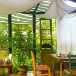 南城市にある緑あふれる隠れ家カフェ「BE NATURAL」
