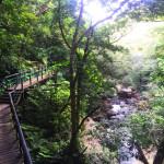 沖縄本島最大の滝「比地大滝」を見てきました