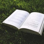 六本木ブックフェスでのんびり読書な週末