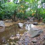 23区で滝を見られると有名な公園「名主の滝公園」へ行ってきた