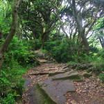 鎌倉アルプスを歩く天国のハイキングコース