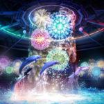 水族館でイルカが花火の中を泳ぐ!?「花火アクアリウム by NAKED」