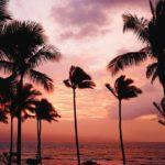 ハワイを体感するHAWAI'I EXPO 2017へ