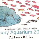 美ら海水族館が銀座にやってくるSony Aquarium 2017をちょこっと見てきました