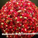 花がテーマの丸の内クリスマスイルミネーション「Marunouchi Bright Christmas 2017」