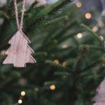 冬のアウトドアを楽しむクリスマスイベント「AOYAMA CHRISTMAS FOREST」