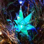 流星とリアルタイムで連動する星降ル森「シンボルツリー」