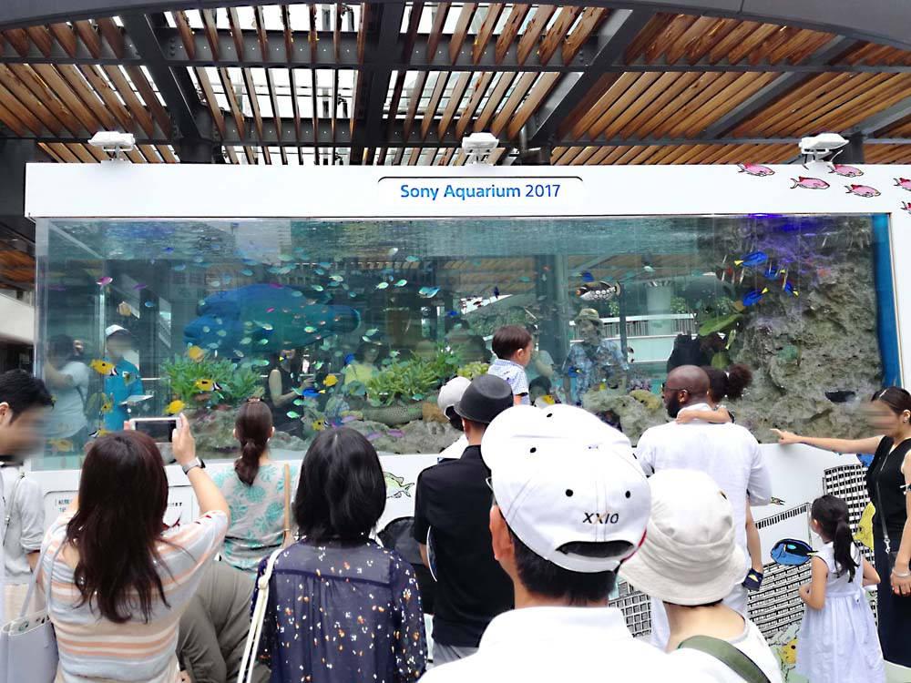 toomilog-sony_aquarium2017_001