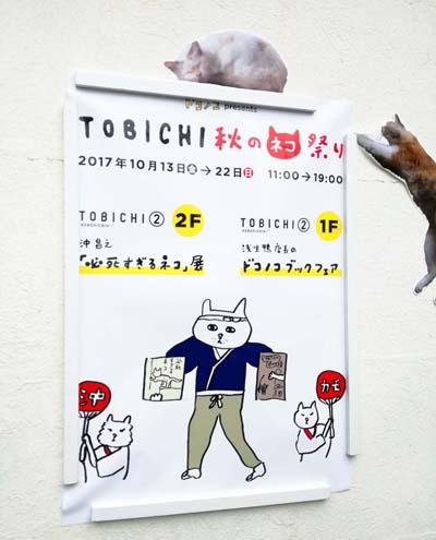 toomilog-hissisugiruneko_022