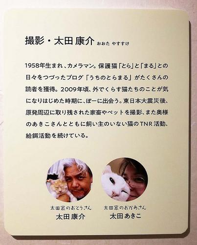 toomilog-tobichinoasobiba_yoshitakesinsuke_017