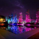 GINZA SIXの屋上庭園が光のデジタルアート空間に!チームラボ「呼応する木々」