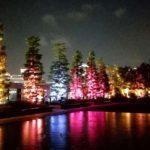 光のデジタルアート空間 チームラボ「呼応する木々」を見てきた