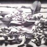 宮本佳美の展覧会「消滅からの形成」へ