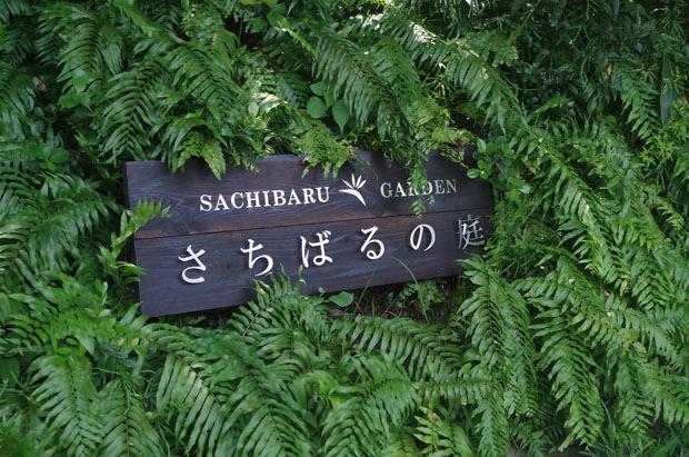 toomilog-sachiharu005