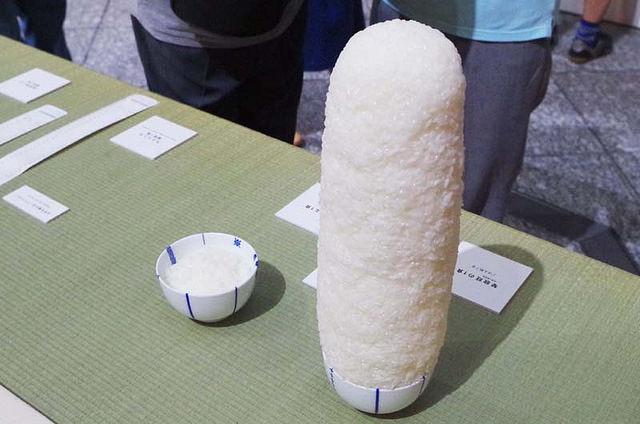 toomilog-shimonatu2015019