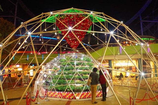 toomilog-Tokyo-dome-illumination021