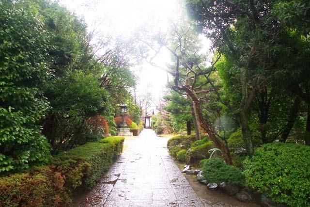 toomilog-ryuunji_zazen004