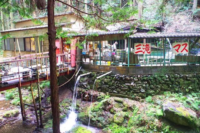 toomilog-ogosekuroyama011