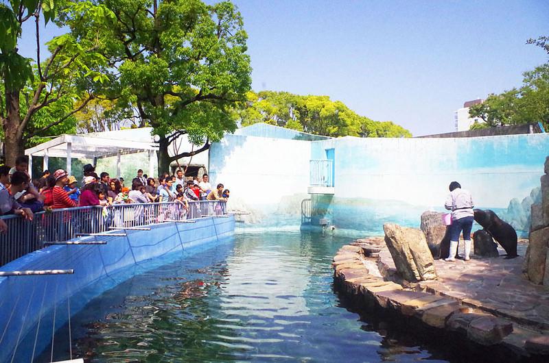 toomilog-edogawaku_zoo024