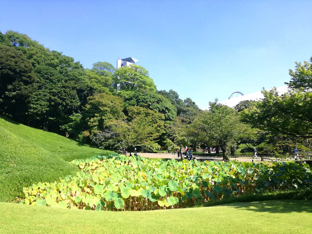 toomilog-koishikawakourakuen_006