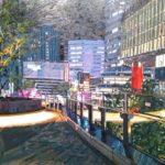 富田直樹の個展「東京」へ
